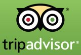 Trip Advisor logo in green