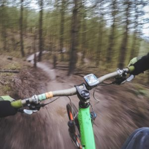 Mountain Biker's view in forest