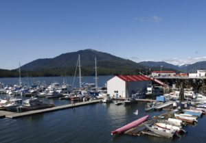 Boats in a northwest coast harbor